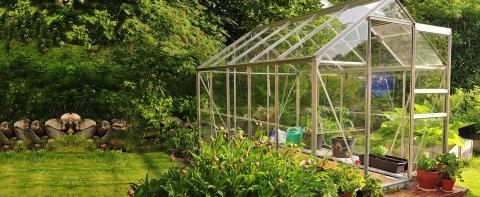 Garden Greenhouses Birmingham